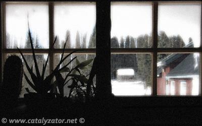 Hustrig morgen i garasjen